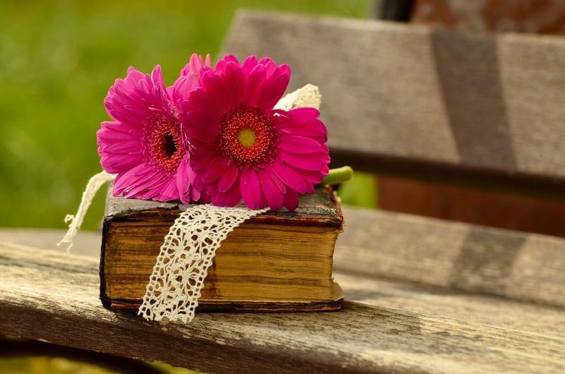 cuáles son mis libros preferidos para disfrutar este verano
