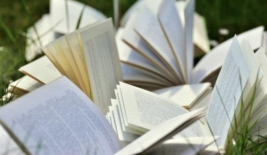 6 ideas para escribir una novela y que tu libro guste a