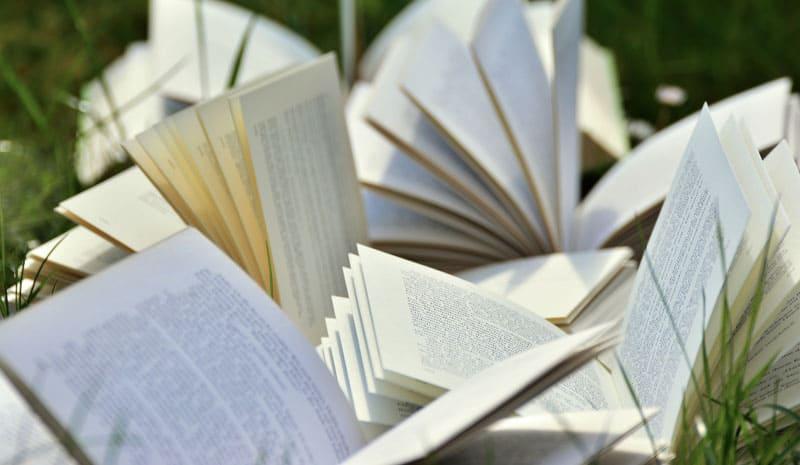 6 ideas para escribir una novela y que tu libro guste a tus lectores